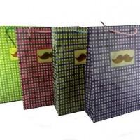 Пакет подар PVC 26*33см КЛЕТКА(1/12/720)4диз