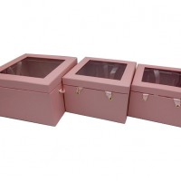Набор коробок подар из 3шт картон С окном, 20*20*13cm 6793(24)