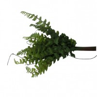 Букет зелени Папоротник 35см 9225-4(72)