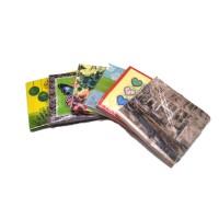 Набор одноразовых салфеток из бумаги 20шт 35718-6