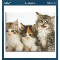 """Набор д/вышивки крестом 40*50 см  X1629 """"Коты"""""""