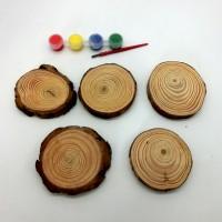Набор д/творчества краски+5деревян спилов TYGYP-19(240)