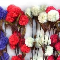 Набор сухоцветов 0568-30